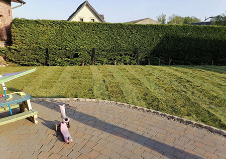 Tonte de pelouse à Cambrai